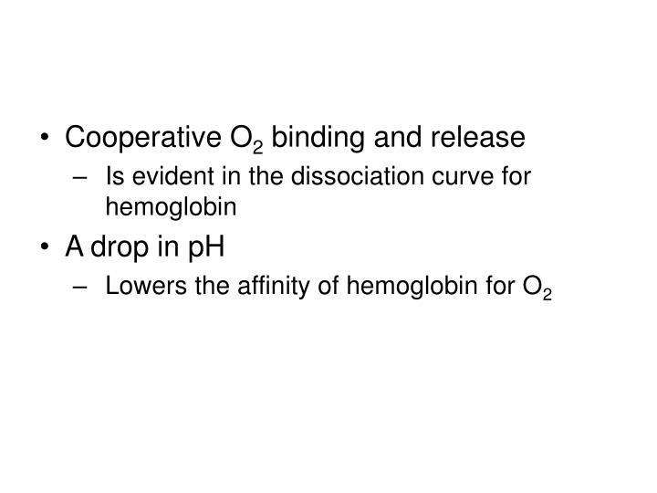 Cooperative O