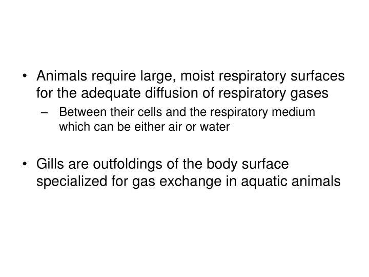 Animals require large, moist respiratory surfaces for the adequate diffusion of respiratory gases