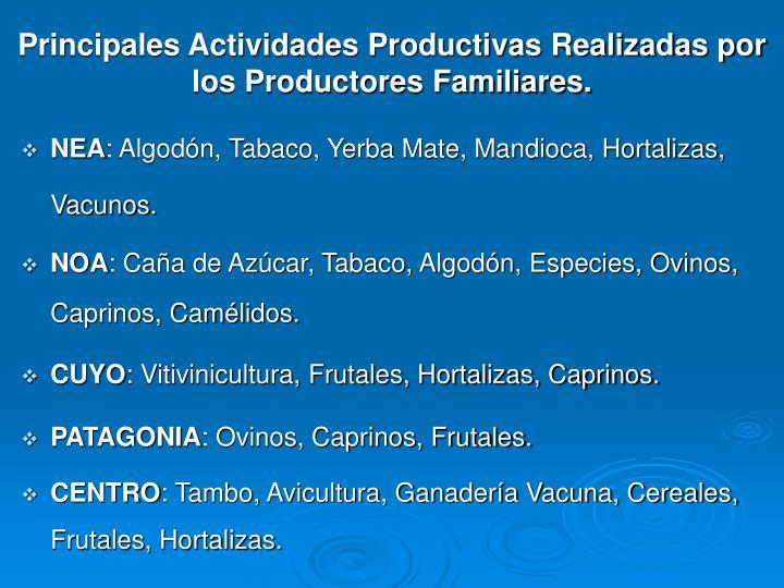 Principales Actividades Productivas Realizadas por los Productores Familiares.