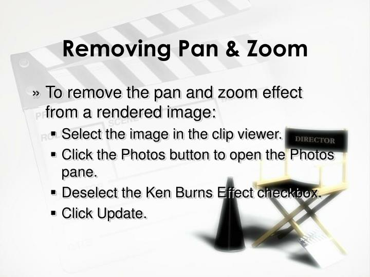 Removing Pan & Zoom