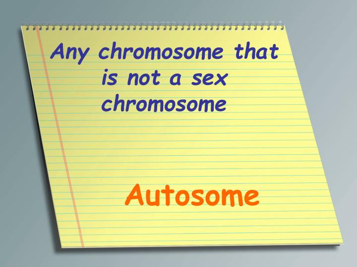 Any chromosome that is not a sex chromosome