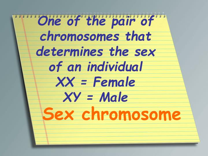 One of the pair of chromosomes that determines the sex of an individual