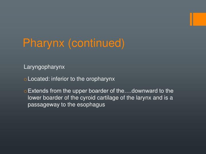Pharynx (continued)