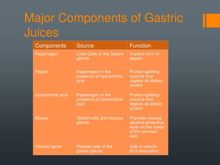 Major Components of Gastric Juices