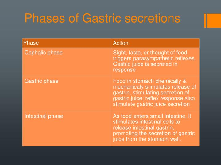 Phases of Gastric secretions