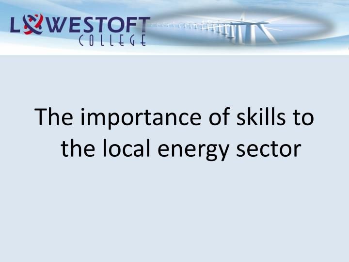 The importance of skills to the local energy sector