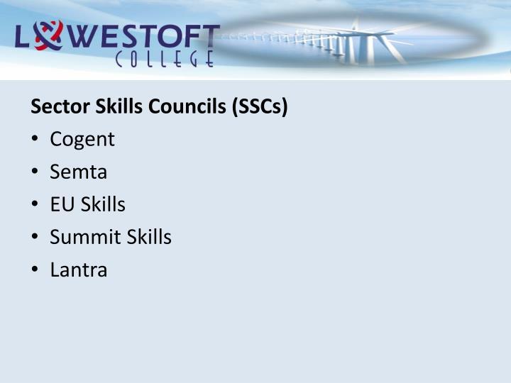 Sector Skills Councils (SSCs)
