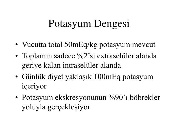Potasyum Dengesi