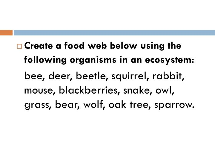 Create a food web below using the following organisms in an ecosystem