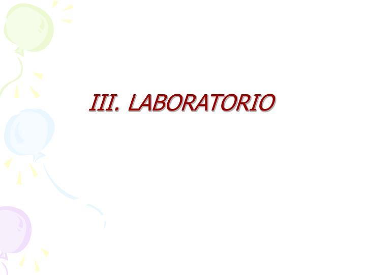 III. LABORATORIO