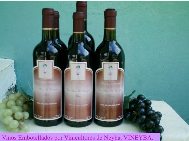 Vinos Embotellados por Vinicultores de Neyba. VINEYBA.