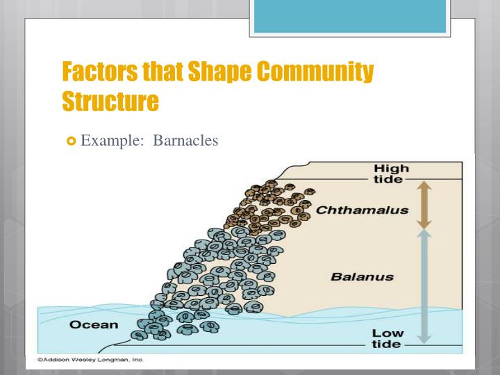 Factors that Shape Community Structure