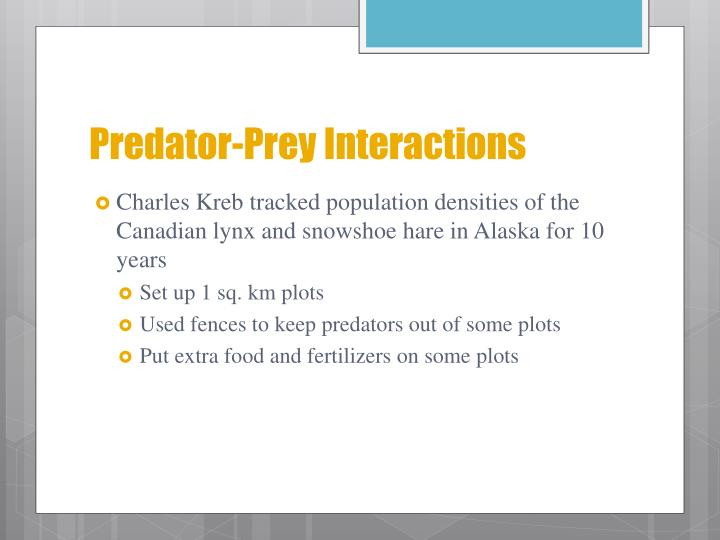 Predator-Prey Interactions