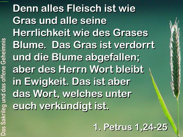 Denn alles Fleisch ist wie Gras und alle seine Herrlichkeit wie des Grases Blume.  Das Gras ist verdorrt und die Blume abgefallen; aber des Herrn Wort bleibt