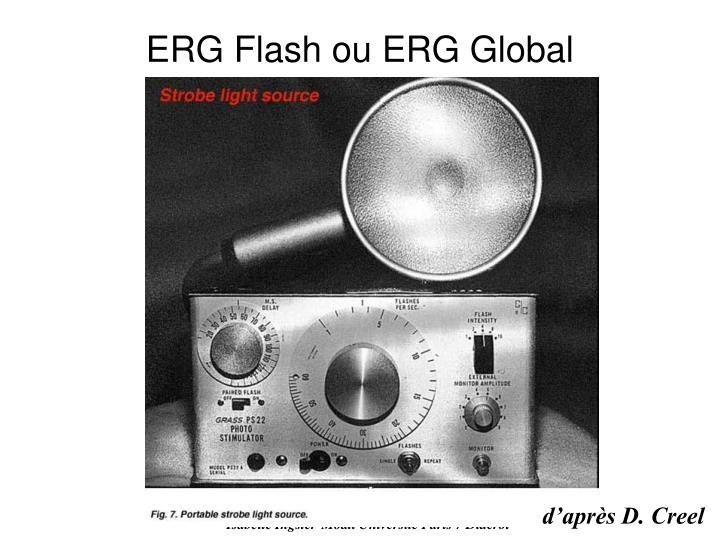ERG Flash ou ERG Global