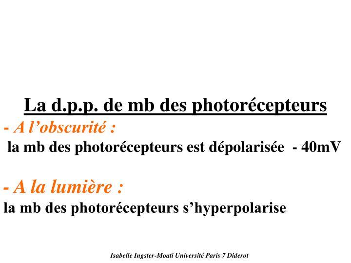 La d.p.p. de mb des photorécepteurs