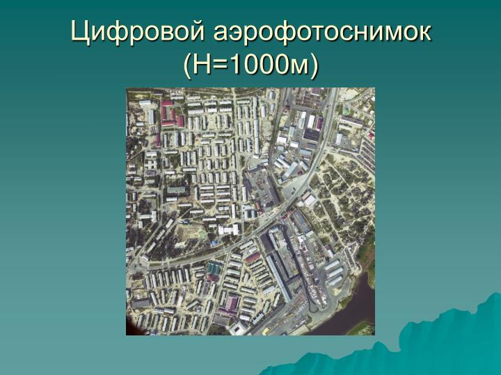 Цифровой аэрофотоснимок (Н=1000м)