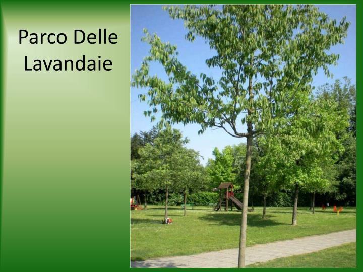 Parco Delle Lavandaie