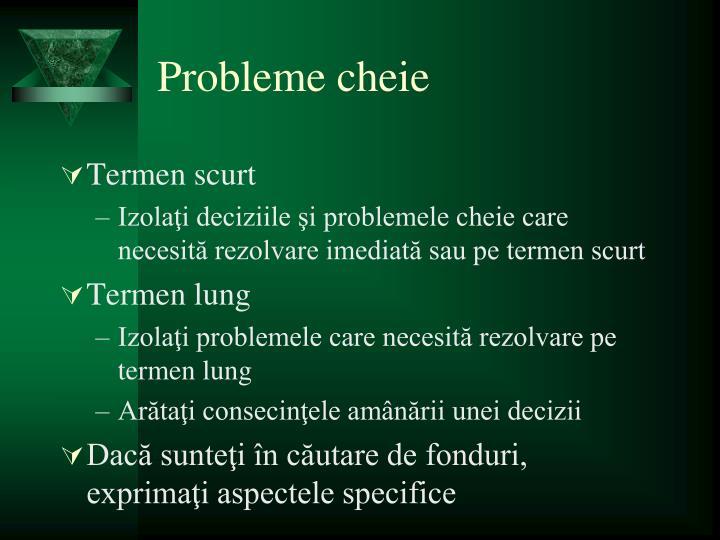 Probleme cheie