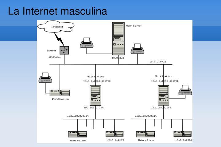 La Internet masculina
