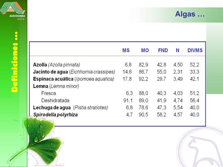 Algas …