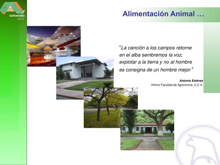 Alimentación Animal …