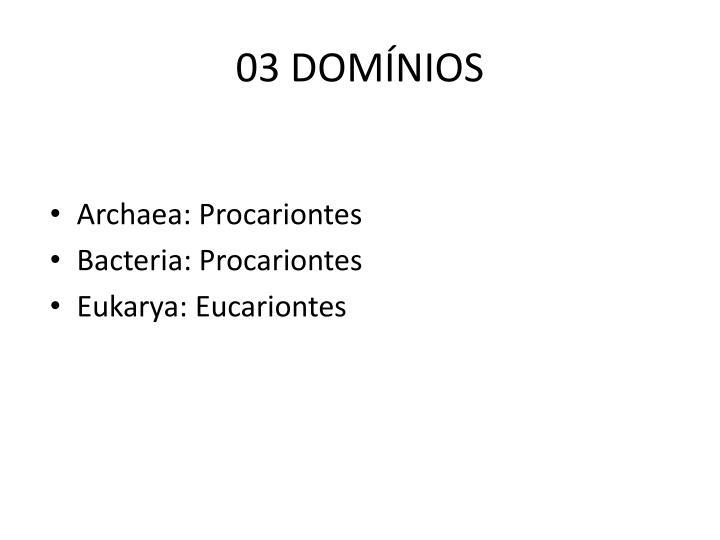 03 DOMÍNIOS