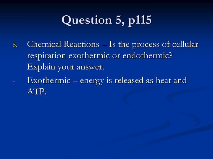 Question 5, p115