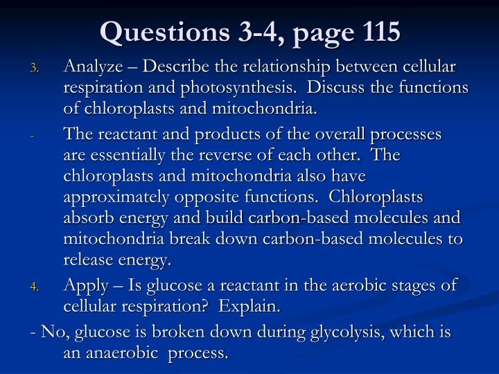 Questions 3-4, page 115