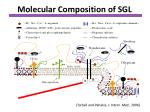 molecular composition of sgl