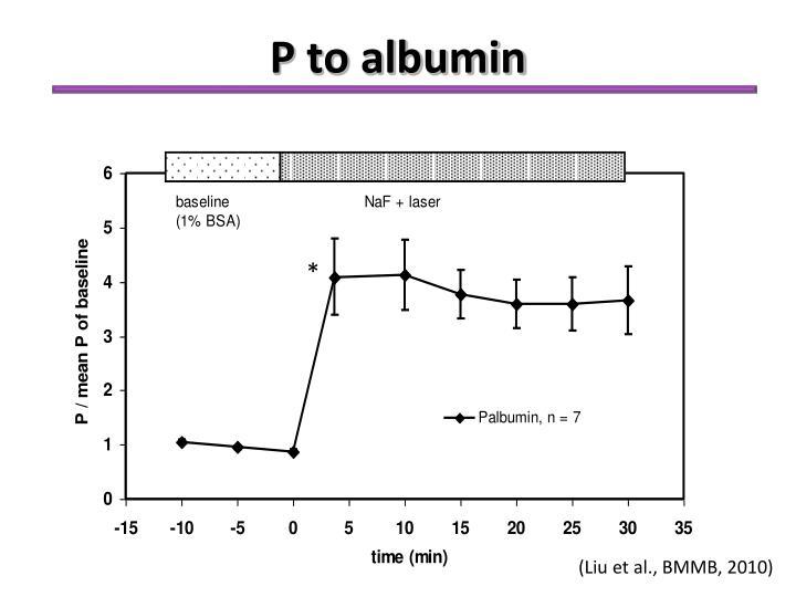 P to albumin