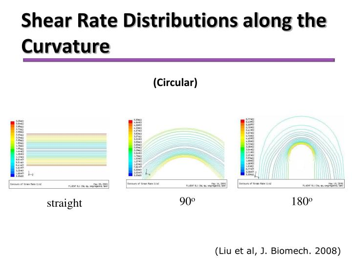 Shear Rate Distributions along the Curvature