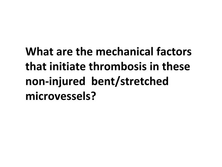 What are the mechanical factors that initiate thrombosis in these non-injured  bent/stretched microvessels?