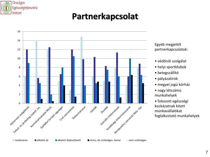 Partnerkapcsolat