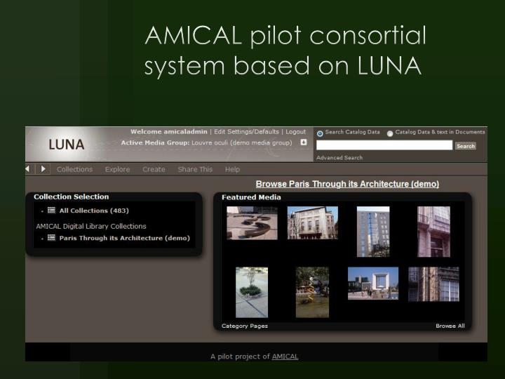 AMICAL pilot consortial system based on LUNA