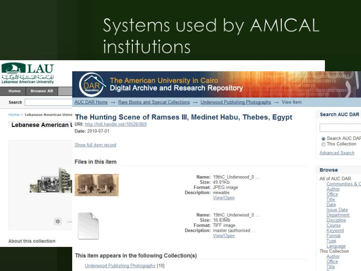 Systems used by AMICAL institutions