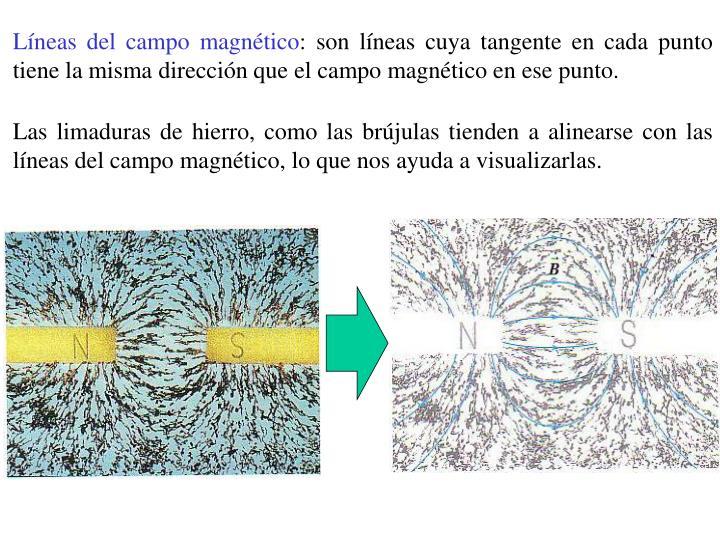 Líneas del campo magnético