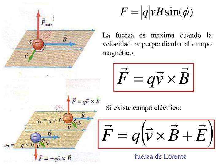 La fuerza es máxima cuando la velocidad es perpendicular al campo magnético.