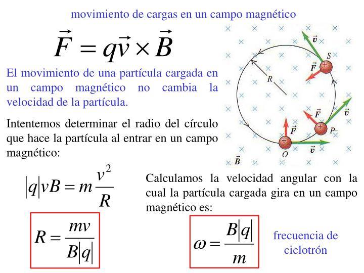 movimiento de cargas en un campo magnético