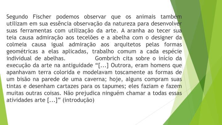 Segundo Fischer podemos observar que os animais também utilizam em sua essência observação da natureza para desenvolver suas ferramentas com utilização da arte. A aranha ao tecer sua teia causa admiração aos tecelões e a abelha com o designer da