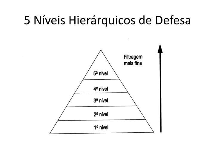 5 Níveis Hierárquicos de Defesa