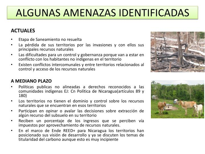 ALGUNAS AMENAZAS IDENTIFICADAS