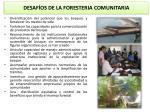 desaf os de la foresteria comunitaria