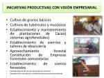 iniciativas productivas con visi n empresarial