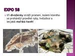 expo 583