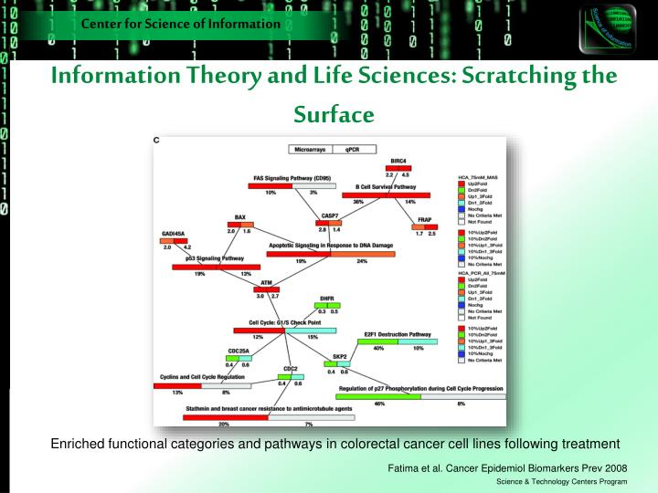 Information Theory and Life Sciences: Scratching the Surface
