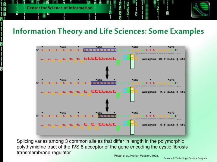 Information Theory and Life Sciences: Some Examples