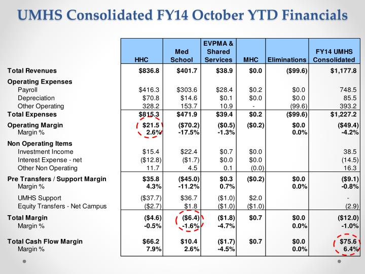 Umhs consolidated fy14 october ytd financials