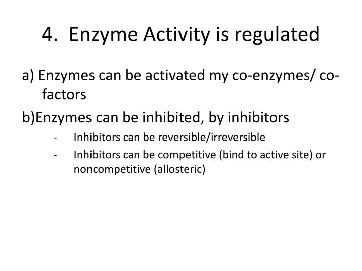 4.  Enzyme