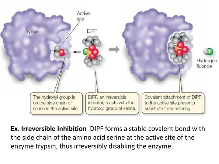 Ex. Irreversible Inhibition